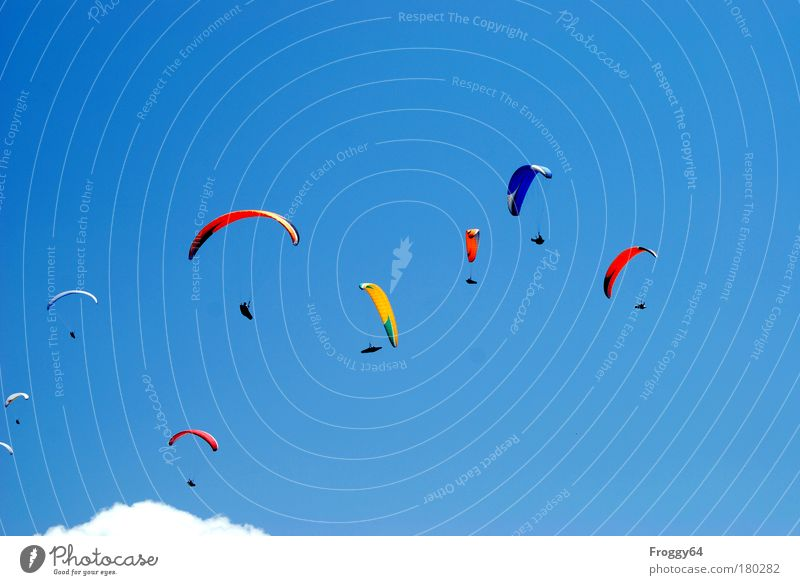 Freiheit Himmel Sommer Freude Wolken Bewegung Glück Luft Zufriedenheit Wind fliegen Abenteuer Erfolg Fröhlichkeit Schönes Wetter Gipfel