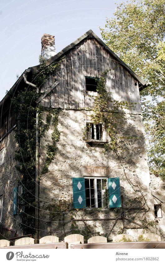 mit Helgi unterwegs | Schnäppchen... Menschenleer Haus Hütte Ruine Bauwerk Altbau Industrieruine Fassade Fenster Dach Schornstein Zaun Stein Holz alt