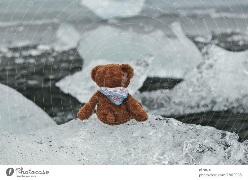 Teddy Per in Island (2) Ferien & Urlaub & Reisen Abenteuer Meer Natur Klimawandel Gletscher Küste Jökulsalon Gletschersee Gletschereis Spielzeug Teddybär