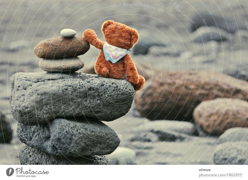 Teddy Per in Island (3) Spielen Ferien & Urlaub & Reisen Strand Natur Küste Teddybär Stein Steinmännchen Troll Blick sitzen Zusammensein Glück klein Freude