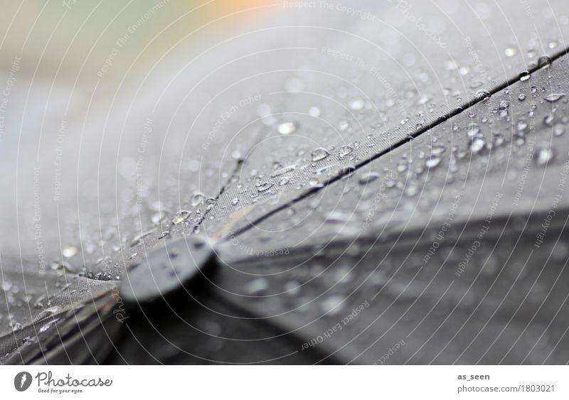 Novemberrain Natur Wasser Wassertropfen Herbst Klima Klimawandel Wetter schlechtes Wetter Regen Regenbekleidung Wetterschutz Regenschirm berühren authentisch