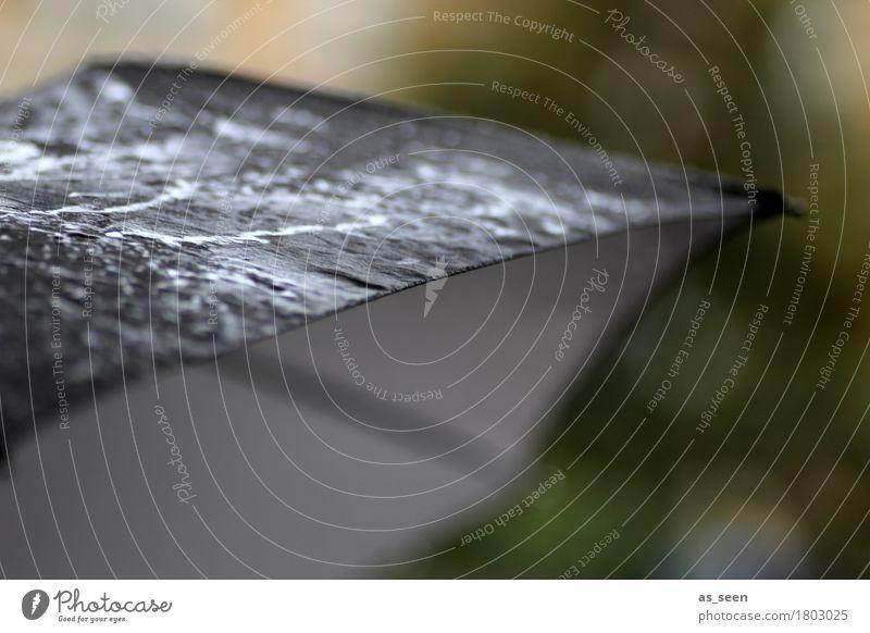 Novemberday Natur grün Wasser Einsamkeit dunkel schwarz Umwelt kalt Traurigkeit grau Regen Wetter glänzend authentisch Klima nass