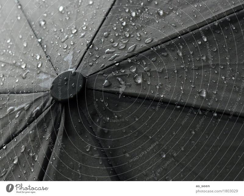 Black rain Wasser dunkel schwarz Umwelt kalt Traurigkeit Herbst grau Regen Wetter glänzend authentisch Wassertropfen Klima nass Schutz