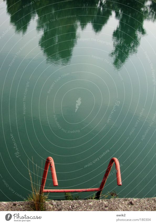 Ende der Saison Himmel Wasser grün Baum rot Wolken ruhig Erholung Herbst Zufriedenheit Freizeit & Hobby Klima Schwimmbad Vergänglichkeit festhalten Schönes Wetter