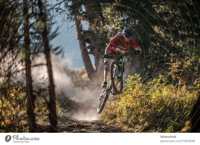 overfly the roots Stil sportlich Fitness Freizeit & Hobby Tourismus Abenteuer Freiheit Berge u. Gebirge Sport Sportler Fahrradfahren Natur Landschaft Erde