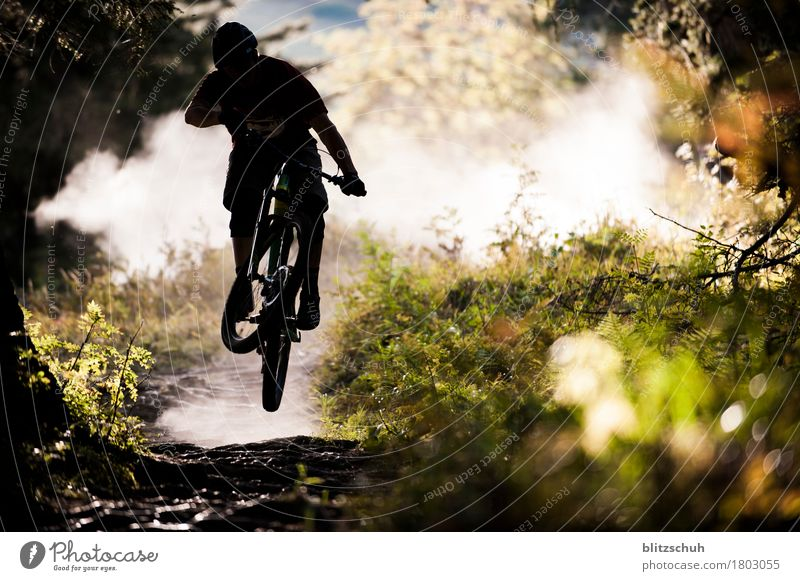 overlfly the roots second part Lifestyle Stil Freizeit & Hobby Ferien & Urlaub & Reisen Tourismus Freiheit Berge u. Gebirge Sport Sportler Fahrradfahren