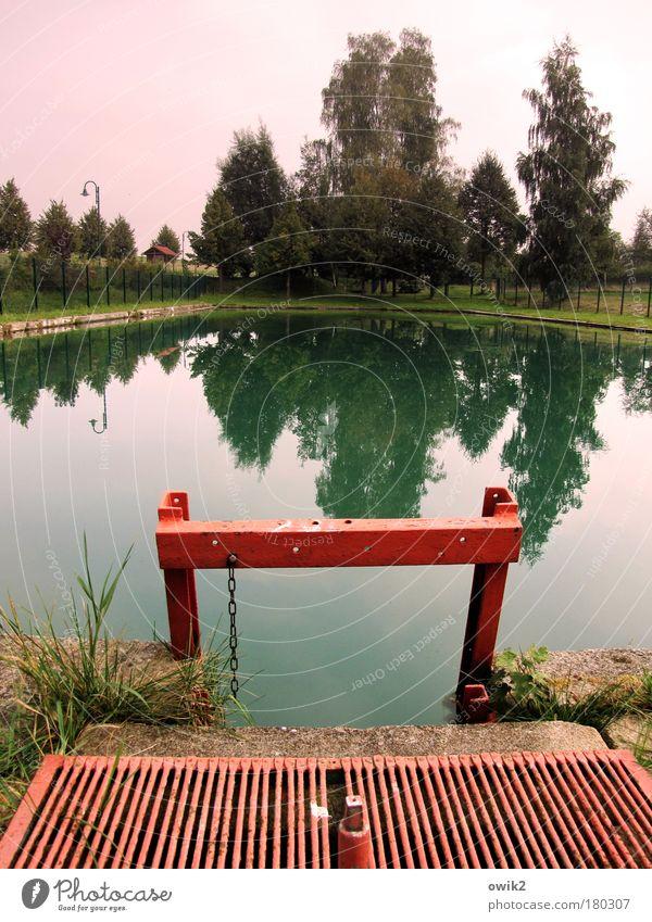 Freibad Tauscha Wasser grün Baum rot ruhig Stein Beleuchtung Horizont rosa Freizeit & Hobby Design Wandel & Veränderung Vergänglichkeit Schwimmbad Idylle Zaun