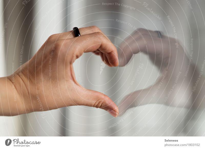 All you need Zufriedenheit Sinnesorgane Hand Finger Schmuck Ring Zeichen Herz Gefühle Glück Fröhlichkeit Lebensfreude Frühlingsgefühle Einigkeit Sympathie