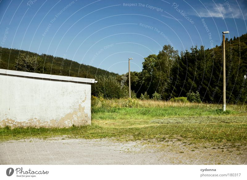 Nüscht los Natur ruhig Einsamkeit Wald Leben Wiese Wand Tod Traurigkeit Mauer Landschaft Umwelt Zeit Perspektive Zukunft trist