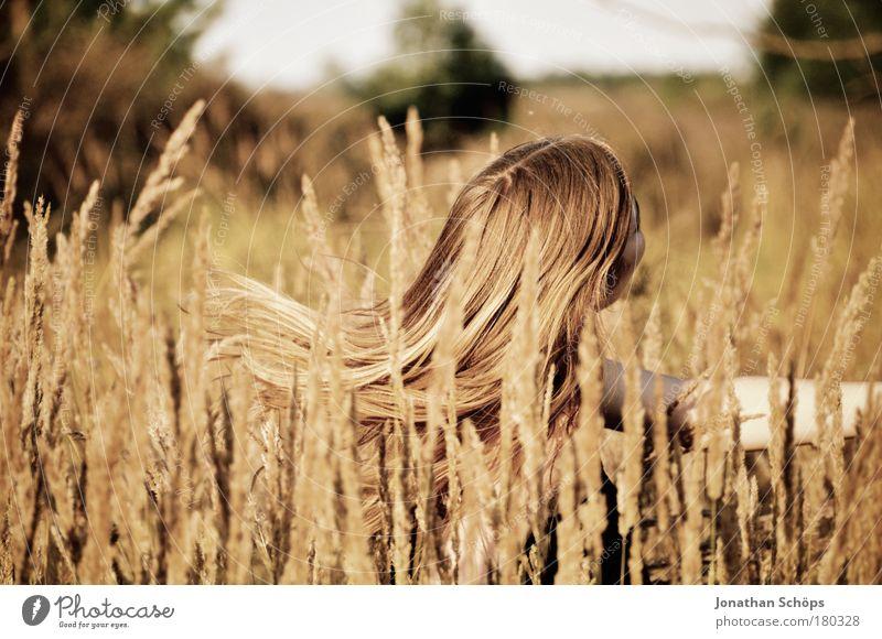 Der Haarschwung im Felde – junge Frau schwingt Haare Farbfoto Außenaufnahme Licht Sonnenlicht Schwache Tiefenschärfe Blick nach hinten Wegsehen Lifestyle Freude