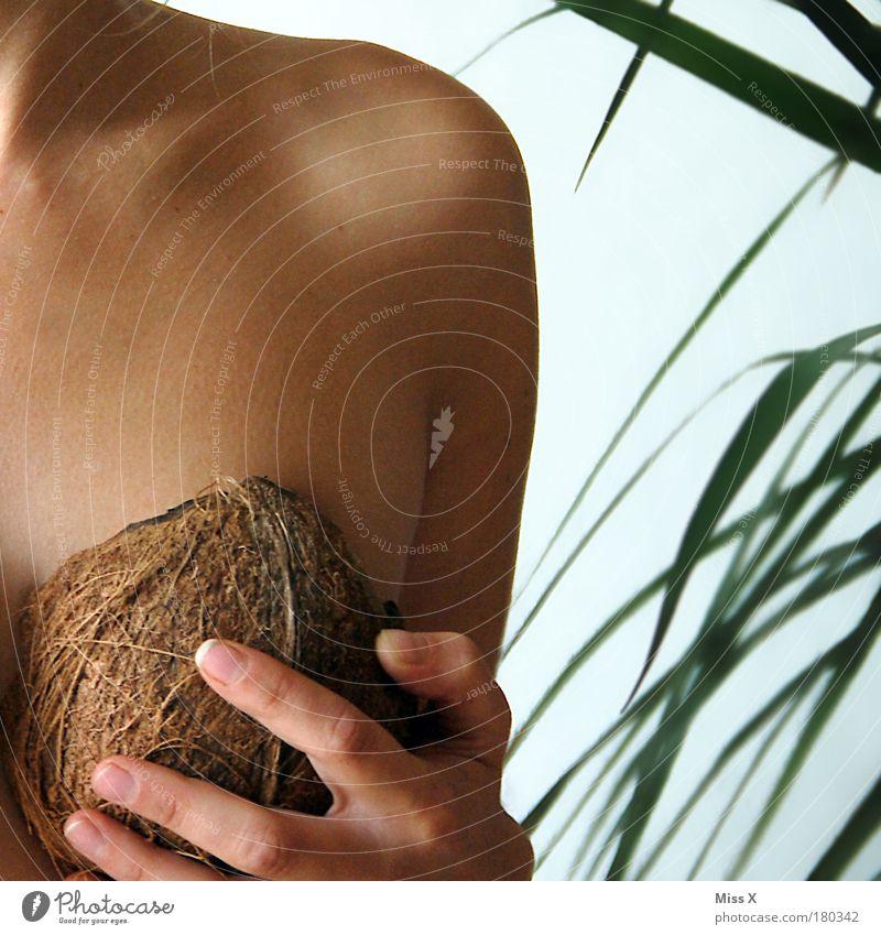 Kokosnuss Innenaufnahme Nahaufnahme Detailaufnahme Textfreiraum oben Hintergrund neutral Tag Lebensmittel Ernährung Ferien & Urlaub & Reisen Sommer Sommerurlaub