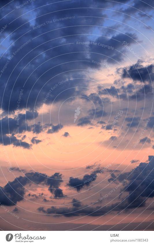 freitag morgen Natur schön Himmel weiß blau rot Winter Wolken Luft rosa Umwelt Horizont bedrohlich natürlich Urelemente Schönes Wetter