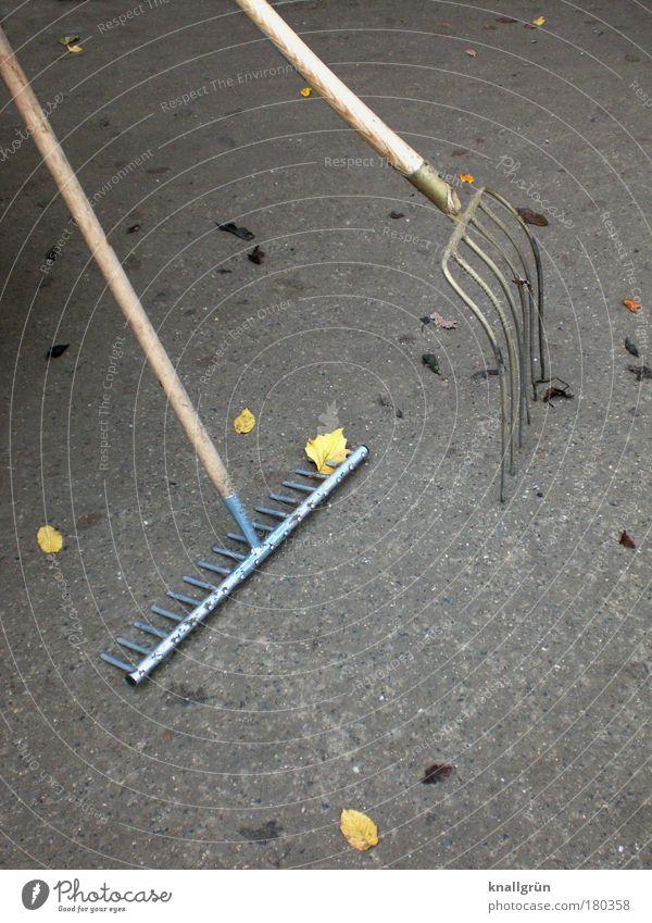 Nix zu tun! Natur Blatt Herbst Garten Holz grau braun Metall warten leer Ordnung trist stehen Spitze Dienstleistungsgewerbe silber