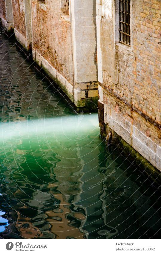 hoffnung Natur alt grün Stadt Ferien & Urlaub & Reisen Haus Wand Gefühle Holz Venedig Stein Mauer Wellen glänzend nass Fassade