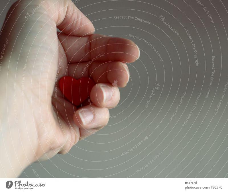 halt mein Herz fest... Mensch Hand rot Gefühle Glück Kraft Kommunizieren geschlossen Finger Warmherzigkeit Romantik festhalten Verliebtheit herzlich