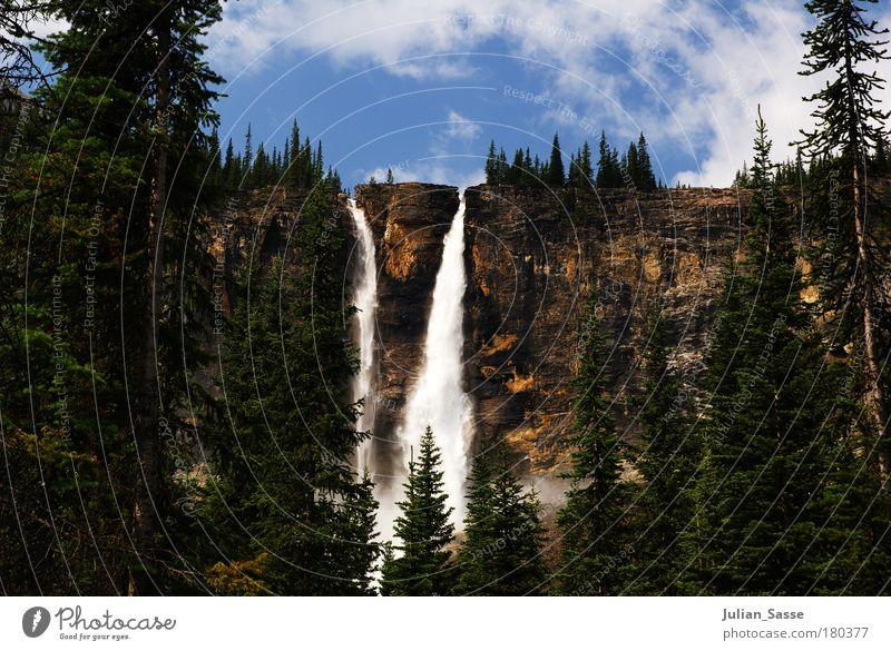 Twin Falls Natur Wasser blau Pflanze Berge u. Gebirge Landschaft Umwelt Erde Australien Tanne genießen Kanada Urelemente Wasserfall Twin Falls