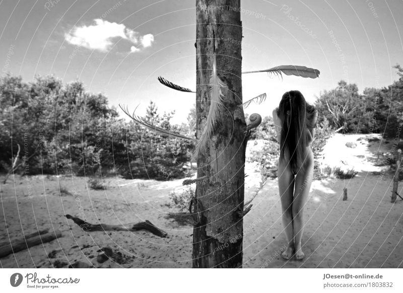 Akt.1 schön Körper Sommer Sonne Sonnenbad Strand Meer Insel feminin Frau Erwachsene Mensch 18-30 Jahre Jugendliche Natur Ostsee Dorf Sand Holz Schwimmen & Baden