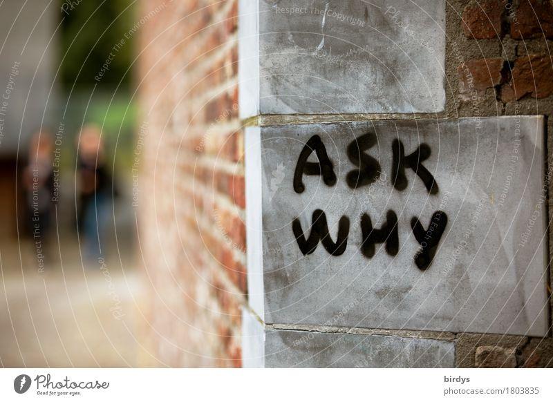 Ask why 2 Mensch Stadt Mauer Wand Fassade Stein Schriftzeichen Graffiti auffordern gehen authentisch Leidenschaft Verantwortung Wahrheit Ehrlichkeit