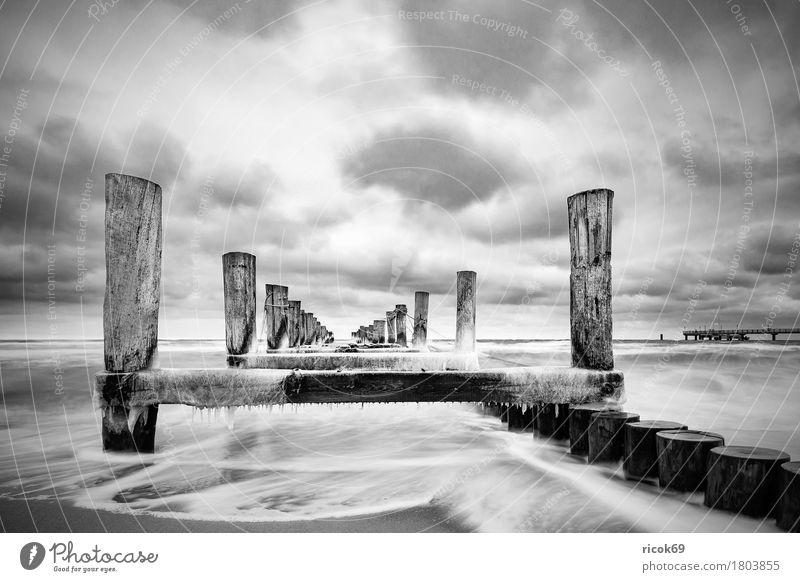 Buhne an der Ostseeküste Natur Ferien & Urlaub & Reisen blau Wasser weiß Landschaft Wolken Strand Winter schwarz kalt Küste Tourismus Idylle Frost