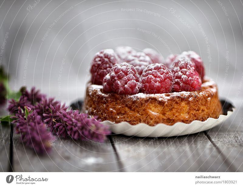 Stillleben Lebensmittel Frucht Dessert Süßwaren tarte Törtchen Kuchen Backwaren Himbeerkuchen Ernährung Kaffeetrinken Vegetarische Ernährung Bäcker Konditorei