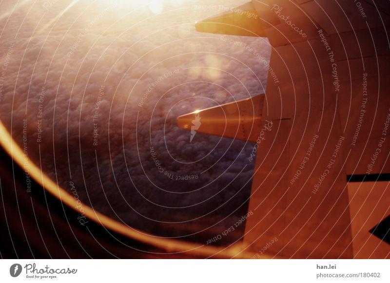 Fly away Farbfoto Außenaufnahme Luftaufnahme abstrakt Menschenleer Textfreiraum links Morgendämmerung Dämmerung Licht Schatten Kontrast Reflexion & Spiegelung