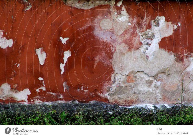 ___ Menschenleer Haus Mauer Wand alt trashig Zerstörung Putz abblättern ungepflegt altrot Bröckchen Schimmelpilze Farbfoto mehrfarbig Außenaufnahme rotbraun