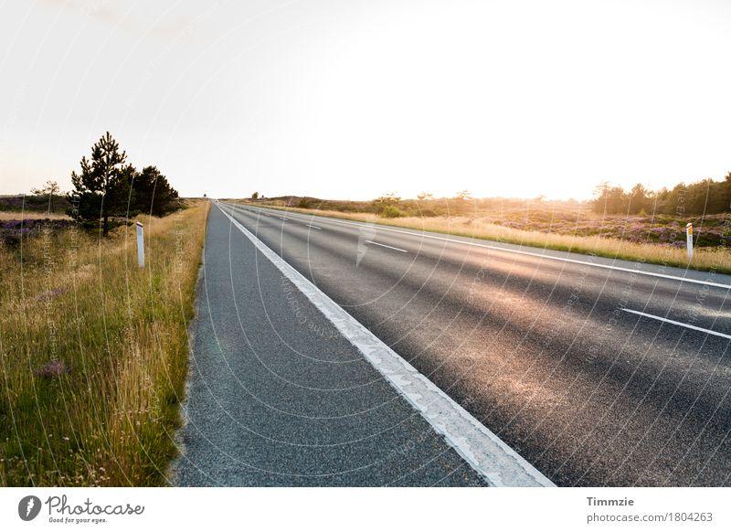 lonely road Sonne Sommer Schönes Wetter Verkehrswege Autofahren Straße Freude Zufriedenheit schön Natur Tourismus Güterverkehr & Logistik