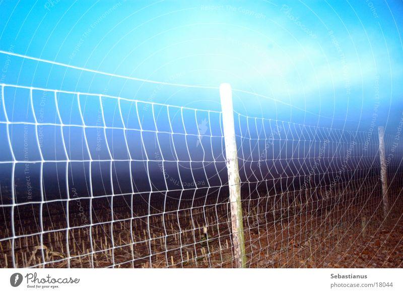 Zaun in der Dämmerung Langzeitbelichtung Feld Abenddämmerung Zaunpfahl Himmel Gegenlicht Maschendraht Maschendrahtzaun Begrenzung Menschenleer Außenaufnahme