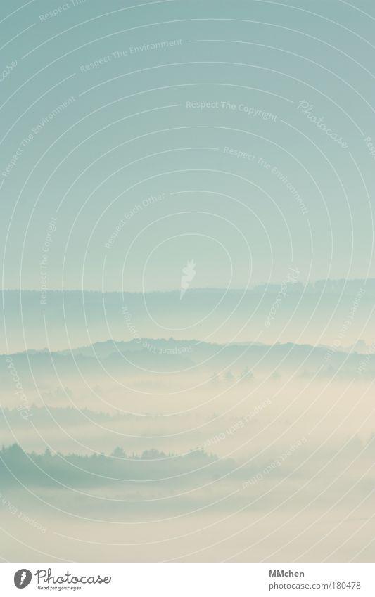 herbstlich Himmel weiß Himmel (Jenseits) Wetter Nebel trist geheimnisvoll verstecken mystisch Dunst Tal untergehen schlechtes Wetter unklar Kulisse