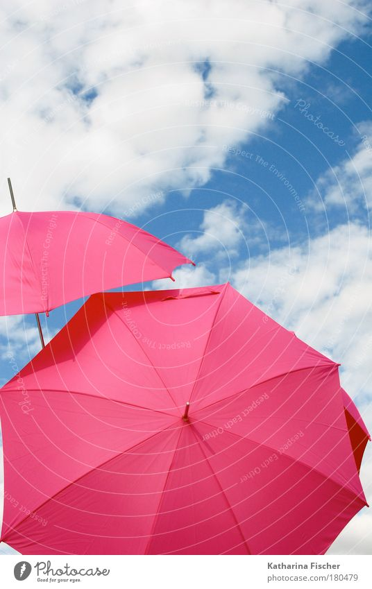 Where the pinkies go Freude Sommer Sonne Kunst Umwelt Himmel Wolken Sonnenlicht Klima Wetter Schönes Wetter Wind Wärme blau rosa weiß Regenschirm Sonnenschirm