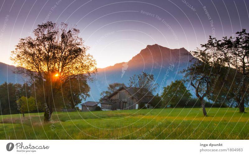 Ein neuer Tag Umwelt Natur Landschaft Pflanze Himmel Horizont Sonne Sonnenaufgang Sonnenuntergang Sonnenlicht Herbst Klima Obstbaum Streuobstwiese