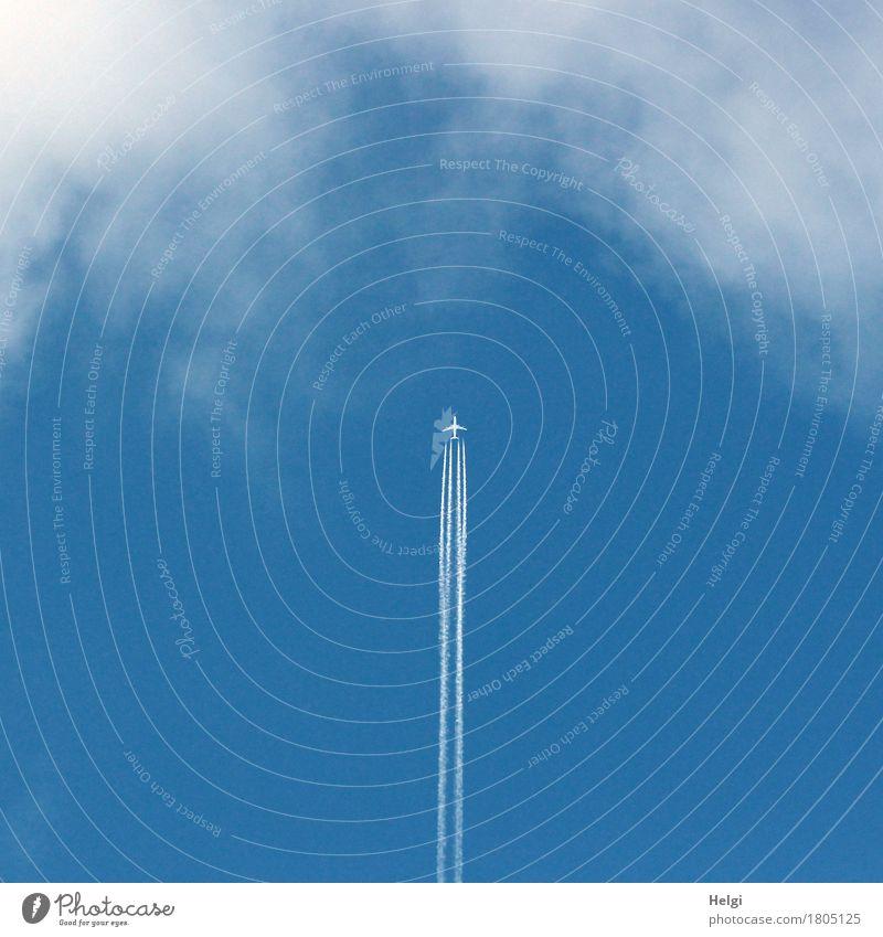 Senkrechtstarter Umwelt Natur Himmel Wolken Schönes Wetter Luftverkehr Flugzeug Passagierflugzeug fliegen außergewöhnlich hoch blau grau weiß Lebensfreude