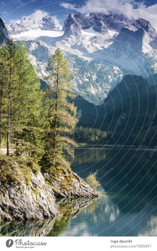 Am See Umwelt Natur Landschaft Pflanze Urelemente Wasser Sommer Herbst Klima Wetter Schönes Wetter Schnee Baum Wald Alpen Berge u. Gebirge Seeufer Gosau