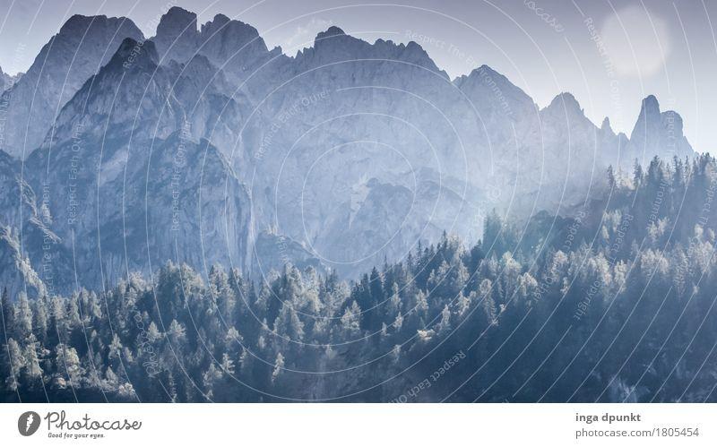 Bergmassiv Natur Ferien & Urlaub & Reisen Pflanze Sommer Sonne Landschaft Wald Berge u. Gebirge Umwelt Schönes Wetter Gipfel Alpen rein Umweltschutz Österreich Salzkammergut