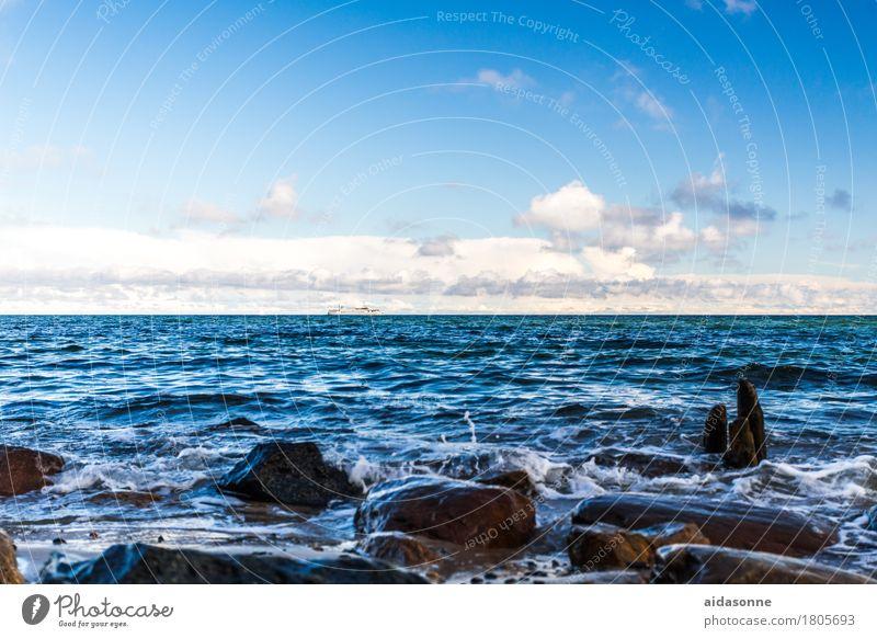strand Natur Landschaft Wasser Ostsee achtsam Wachsamkeit Vorsicht Gelassenheit geduldig ruhig Farbfoto Außenaufnahme Menschenleer Tag