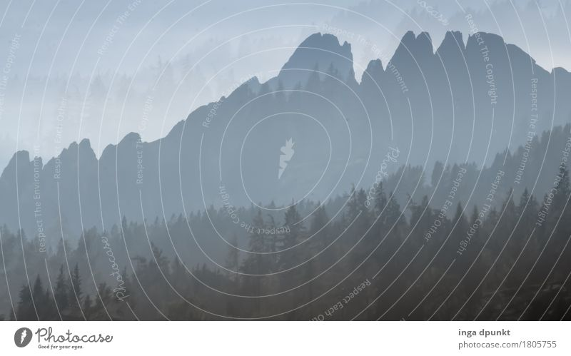 Berglandschaft Umwelt Natur Landschaft Himmel Wolkenloser Himmel Herbst Wald Berge u. Gebirge Gipfel Österreich Salzkammergut blau grau Tourismus