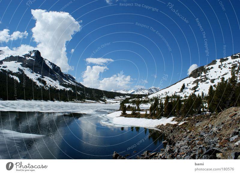 See im Yosemite NP Farbfoto Außenaufnahme Menschenleer Tag Reflexion & Spiegelung Zentralperspektive Natur Landschaft Wasser Himmel Schönes Wetter Schnee Park