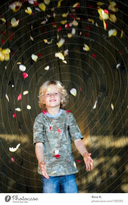 RosenBlätterRegen Mensch Kind blau rot Freude gelb Spielen Junge Glück lustig Regen Kindheit blond Rose Fröhlichkeit Blume