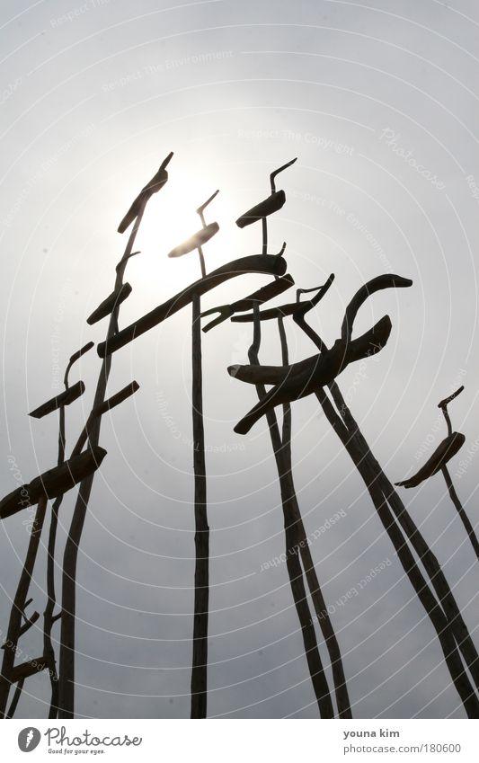 Baum ruhig Tier Garten Landschaft Umwelt Kultur Skulptur Urelemente Schönes Wetter exotisch Geborgenheit Tatkraft Kunst Wolkenloser Himmel