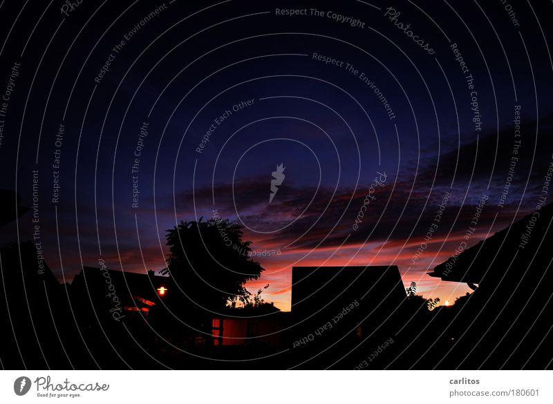 Sonnenuntergänge haben's schwer ... Farbfoto Außenaufnahme Menschenleer Textfreiraum oben Dämmerung Nacht Silhouette Langzeitbelichtung Starke Tiefenschärfe