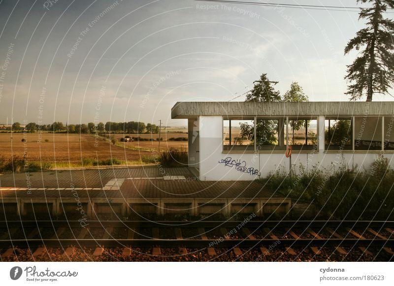 Ein weites Feld Farbfoto Außenaufnahme Menschenleer Textfreiraum links Textfreiraum oben Morgen Tag Licht Schatten Kontrast Sonnenlicht Zentralperspektive