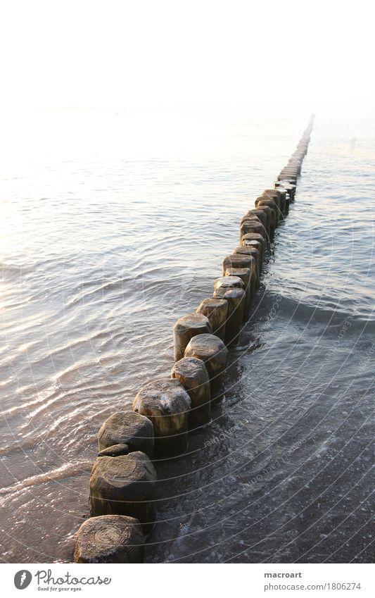 Buten Natur Ferien & Urlaub & Reisen Meer Strand Reisefotografie natürlich Küste Holz See Sand Wellen Schutz Ostsee Sandstrand Gewässer Holzpfahl