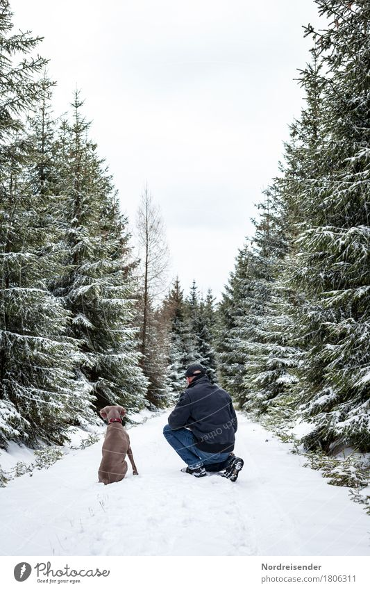 Jagdfieber.... Ausflug Freiheit Winter Winterurlaub Mensch Mann Erwachsene Natur Landschaft Klima Eis Frost Schnee Baum Wald Wege & Pfade Tier Haustier Hund