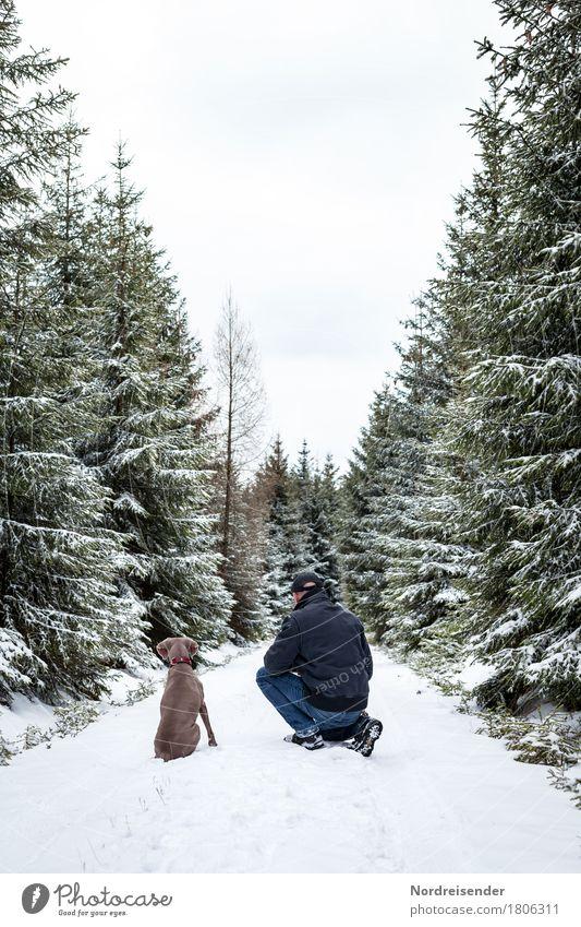 Jagdfieber.... Mensch Hund Natur Mann weiß Baum Landschaft Tier Freude Winter Wald Erwachsene Wege & Pfade Schnee Spielen Freiheit