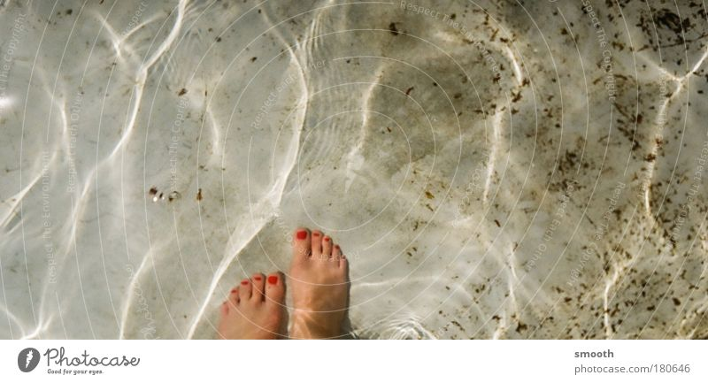 Diamantkneippen Mensch Wasser schön Sonne Sommer ruhig Erholung Leben feminin Stil Fuß Wellen Schwimmen & Baden elegant Lifestyle Urelemente