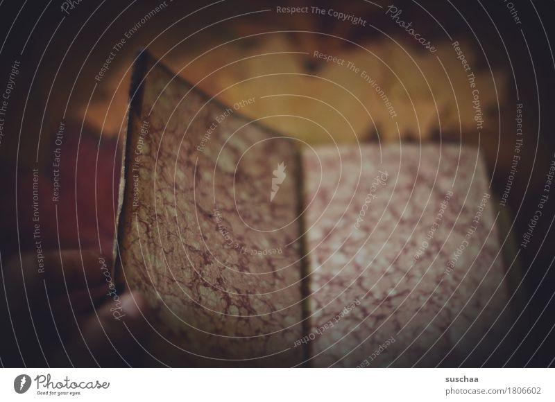 altes buch I Buch Bucheinband Buchseite lesen Printmedien Herbst gemütlich blättern Hand Finger Batik Papier Büttenpapier retro dunkel Traurigkeit altmodisch