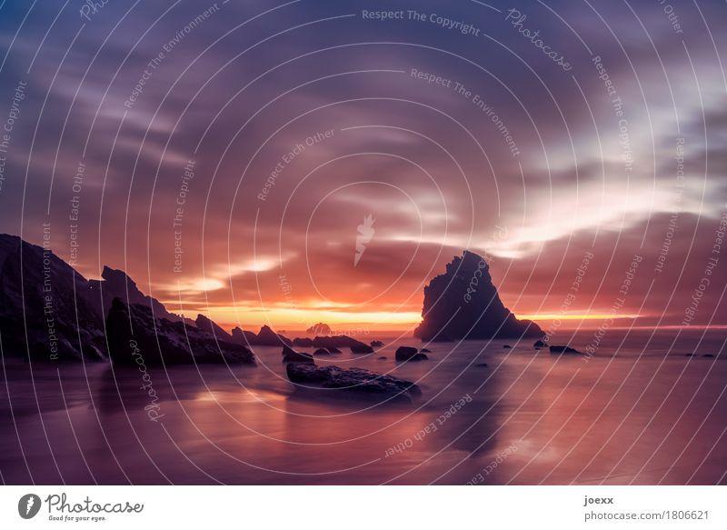 So viele Jahre Strand Meer Wellen Himmel Wolken Sonnenaufgang Sonnenuntergang Sommer Schönes Wetter Küste groß wild orange schwarz Horizont Natur Farbfoto