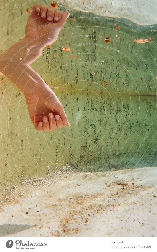 Spiegelspiel Wasser Hand grün schön ruhig Erholung träumen natürlich ästhetisch Reinigen einfach Vertrauen Spiegel Gelassenheit Glaube entdecken