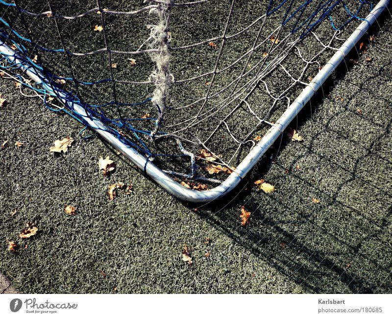 ecke. links. Freude Blatt Wiese Sport Herbst Spielen Gefühle Gras Linie Freizeit & Hobby Design authentisch Lifestyle Ecke Hoffnung Netz