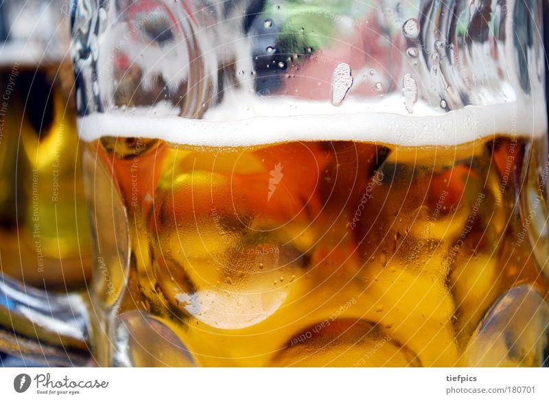oans, zwoa, gsuffa. Textfreiraum oben Getränk trinken Alkohol Bier Glas Freude Nachtleben Veranstaltung ausgehen Feste & Feiern Gastronomie frisch kalt gold